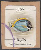 Tonga 1984-85 Used Sc #574 32s Acanthurus Leucosternon Fish - Tonga (1970-...)