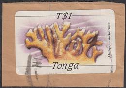 Tonga 1984-85 Used Sc #576 1pa Millepora Dichotama Coral - Tonga (1970-...)