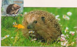 CM-Carte Maximum Card # 2001-France (N°Yvert 3383) Animaux,Animals,Tiere # Hérisson ,Igel, Hedgehog  # Paris - 2000-09