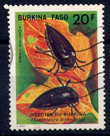 BURKINA-FASO - N° 701° - STERNOCERA INTERRUPTA - Burkina Faso (1984-...)