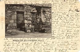 CORSE - - BERGERIE DU LIAMONE - Ed. T. Massel - 1902 - - Non Classés