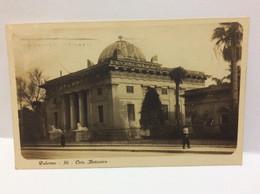 Palermo Sicilia Orto  Botanico Primi 900  Editore Traldi 36 - Palermo