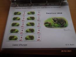 A.Buzin 2019 Carphiwal - 1985-.. Pájaros (Buzin)