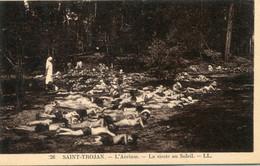 -17- CHARENTE-MARITIME -  OLERON- SAINT-TROJAN- L'Aerium-La Sieste Au Soleil - Ile D'Oléron