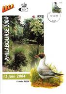 A.BUZIN    MOUETTE-RIEUSE  CACHET CHARLEROI17-12-04-2009 - 1985-.. Pájaros (Buzin)