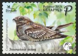 Belarus 2021 Bird Of The Year. European Nightjar. Mi 1401 - Other