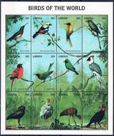 Bloc Sheet Oiseaux Birds Neuf MNH **  Liberia 2007 - Other