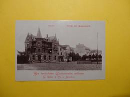Gruss Aus Rapperswyl - Rapperswil - Alpenhof  1902 / Glückwunschkarte (9101) - SG St. Gall