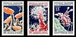 NOUV.-CALEDONIE 1964 - Yv. 322 323 Et 324 **   Cote= 12,00 EUR - Aquarium De Nouméa (3 Val.)  ..Réf.NCE26896 - Unused Stamps