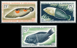 NOUV.-CALEDONIE 1965 - Yv. PA 81 82 Et 83 **   Cote= 22,30 EUR - Poissons  Coris (3 Val)  ..Réf.NCE26790 - Unused Stamps