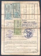 PERMIS DE CHASSE DEPARTEMENT DE LA CHARENTE MARITIME TIMBRES FISCAL 1948 1949 - Fiscaux