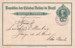 BRESIL 1907    ENTIER POSTAL/GANZSACHE/POSTAL STATIONARY  CARTE - Enteros Postales