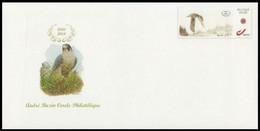DUOSTAMP** / MYSTAMP** - BUZIN - Faucon Pélerin / Slechtvalk / Wanderfalke - A.B.C.P. - 2003-2018 - Entier Postal - Persoonlijke Postzegels