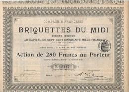 COMPAGNIE FRANCAISE DES BRIQUETTES DU MIDI - ACTION DE 250 FRS -ANNEE 1902- DIVISE EN 3000 ACTIONS - Mineral