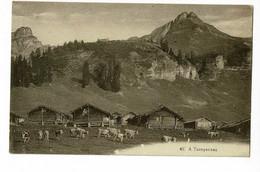 A Taveyannaz (monts, Chalets, Troupeau De Vaches) Pas Circulé, Choc Avec Trou Au Centre (voir Verso) - VD Vaud