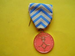 Afrique Du Nord ,,médaille Opex , Reconnaissance De La Nation - Francia