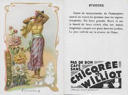 "CHROMOS.  Chicorée WILLIOT.  Indochine  ""Pivoines""...S3140 - Tea & Coffee Manufacturers"