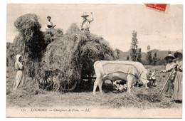 CP - Attelage De Vaches  Environ De  Lourdes Chargeurs De Foin 1908 Au Dos - Lourdes