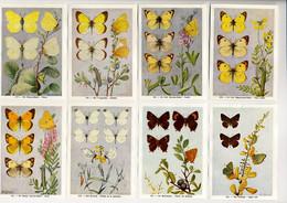 Fort - Vlinders, Papillons, Butterflies - 117 - 124 - Non Classés