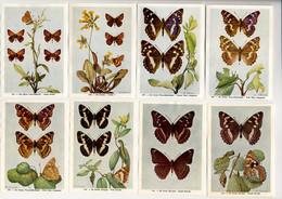 Fort - Vlinders, Papillons, Butterflies - 125 - 132 - Non Classés