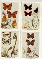 Fort - Vlinders, Papillons, Butterflies - 141 - 144 - Non Classés