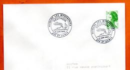 974 ST DENIS    REUTHON    1988 Lettre Entière N° JK 717 - Cachets Commémoratifs