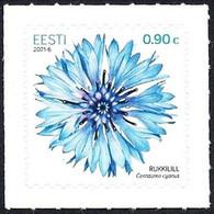 Estonia Estland Estonie 2021 (06) Cornflower - The National Flower Of Estonia - Estonie