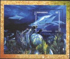 BAHAMAS, 1999, ENVIRONMENT PROTECTION, DOLPHINS, YV#B.94, SS, MNH - Bahamas (1973-...)
