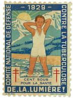 Grand Timbre Contre La Tuberculose 1929 , TAILLE 13 X 18 - Antituberculeux