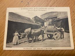 Charrette Aux Boeufs à Madère - Lloyd Royal Hollandais (Koninklijke Hollandsche Lloyd), Used - Madeira
