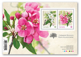 2021 Canada Flower Crabapple Blossom Mini Sheet MNH - Neufs