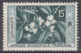 N° 62 - X X - ( C 555 ) - Unused Stamps