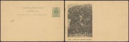 """EP Au Type 5ctm Vert Neuf (n°19B I) + Repiquage Au Verso """"Spa - Parc De 7 Heures (entrée)"""" (G. Engel) - Postales [1909-34]"""