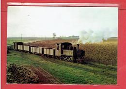 TOURY 1962 TRAMWAY DE PITHIVIERS A TOURY TRAIN DE BETTERAVES POUR LA SUCRERIE SUCRE CARTE EN TRES BON ETAT - Other Municipalities