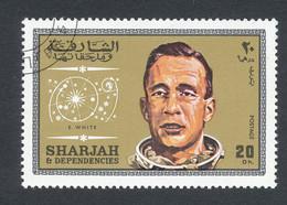 E.WHITE - Sharjah