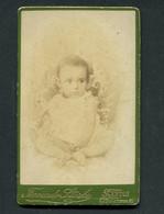 Fotografia Antiga FERNANDO STARKE - Apparelho Especial Para Gruppos - Santos (São Paulo) BRASIL. Old CDV Photo BRAZIL - Ancianas (antes De 1900)