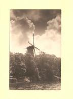 Fotokaart Alkmaar Molen De Groot RY46380 - Alkmaar