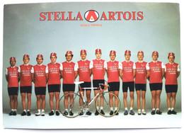 Stella Artois - Pedale Riminese Formazione Dilettanti 1988 - Cycling