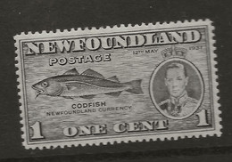 Canada - Newfoundland, 1937, SG 257, Mint Hinged - 1908-1947