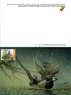 A.BUZIN     BERNACHE   NONNETTE - 1985-.. Pájaros (Buzin)