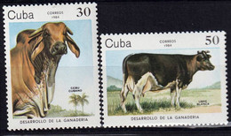 CUBA - Faune, Vaches - Y&T N° 2570-2574 - MNH - 1984 - Neufs