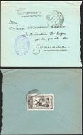 """España - Sobre Mat """"Sucursal 3 11/2/54 - Madrid"""" + """"Administración De Correos - Madrid - Estafeta Sucursal 3"""" A Granada - 1951-60 Lettres"""