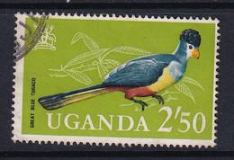 Uganda: 1965   Birds   SG123    2s 50    Used - Uganda (1962-...)