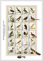 Caribbean Netherlands  2021 (Bonaire) MS MNH  Birds Bird Oiseaux Oiseau - Sin Clasificación