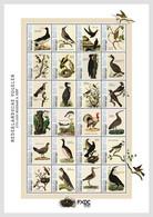Caribbean Netherlands  2021 (Saba) MS MNH  Birds Bird Oiseaux Oiseau - Sin Clasificación