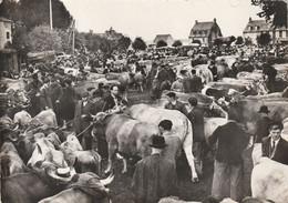 LAGUIOLE  JOUR DE FOIRE DES AUBRACS VERS 1960 - Other Municipalities