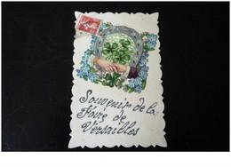 78. N°38704.versailles.souvenir De La Foire. - Versailles