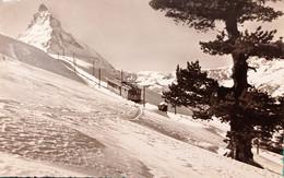 Cartolina - Zermatt - Matterhorn - Die Gornergratbahn Auf Riffelalp - 1952 - Non Classificati