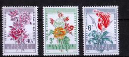1960, UMM, Gent Flower Festival - Otros
