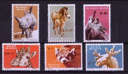 1961, UMM, Antwerp Zoo - Otros